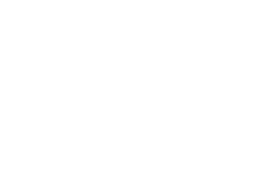 Logo - RSM US Alliance